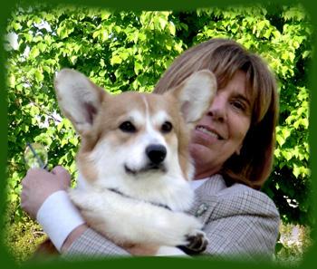 Harrisburg Kennel Club Dog Show Results